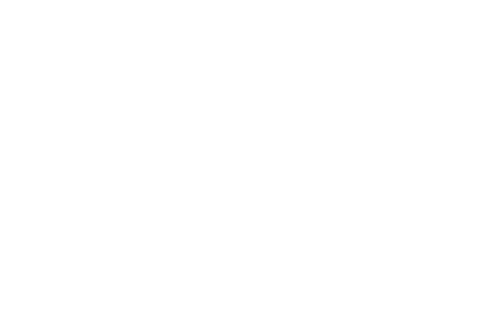 Binary Forge logo